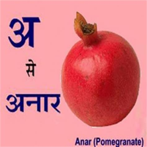 My family essay in hindi